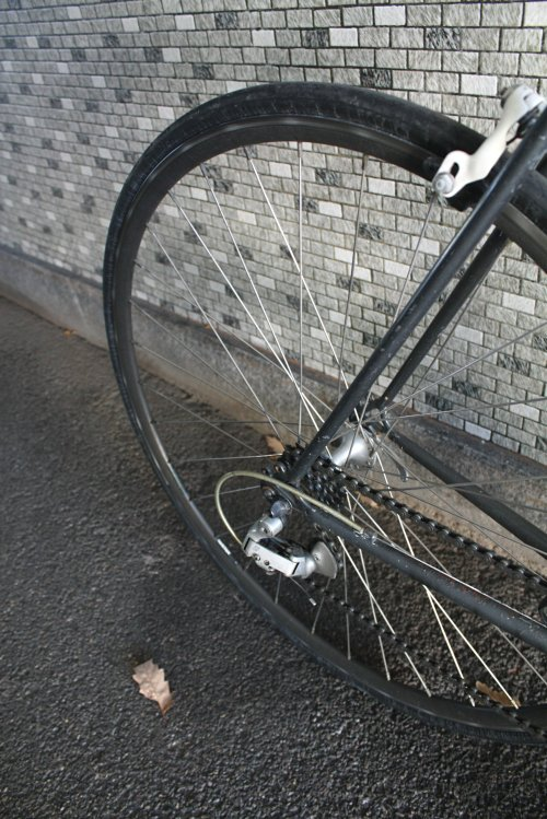 Fuji DelRey 009